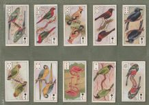 "Cigarette cards Birds playing cards inserts by ""Pirate cigarettes"" 1916"
